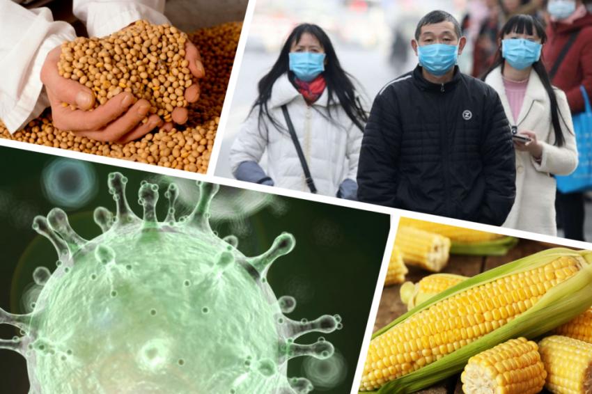 Влияние пандемии на экспорт продуктов питания в Китай