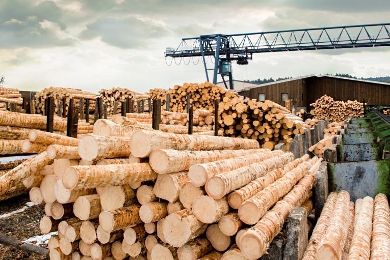 Экспорт леса в Китай (КНР)